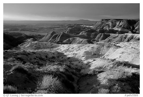 Badlands of  Chinle Formation seen from Whipple Point, stormy sunset. Petrified Forest National Park (black and white)
