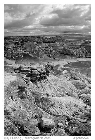 Petrified logs and Blue Mesa, mid-day. Petrified Forest National Park (black and white)