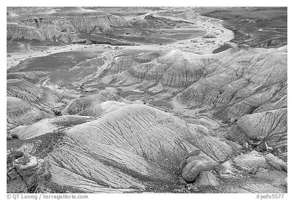 Fossilized logs and Blue Mesa, mid-day. Petrified Forest National Park (black and white)