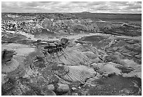 Petrifieds logs and Blue Mesa, mid-day. Petrified Forest National Park, Arizona, USA. (black and white)