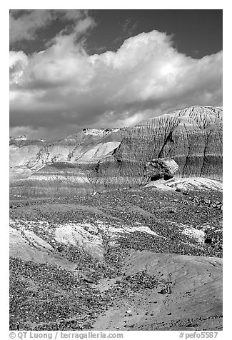 Blue Mesa badlands and pedestal fossilized log, afternoon. Petrified Forest National Park (black and white)