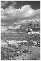 Blue Mesa badlands and pedestal fossilized log, afternoon. Petrified Forest National Park, Arizona, USA. (black and white)