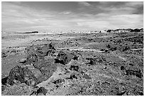 Long Logs area, with highest concentration of petrified wood in  Park, morning. Petrified Forest National Park, Arizona, USA. (black and white)