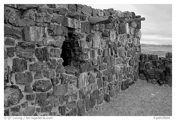 Agate House built with fossilized wood. Petrified Forest National Park (black and white)