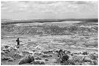 Visitor looking, Painted Desert near Tiponi Point. Petrified Forest National Park ( black and white)