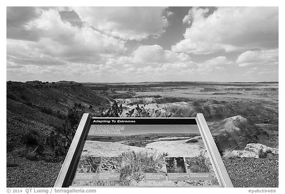 Interpretive sign, Painted Desert near Tawa Point. Petrified Forest National Park (black and white)