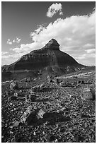 Petrified wood and eroded monolith. Petrified Forest National Park ( black and white)