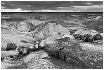 Broken logs of petrified wood at sunset, Crystal Forest. Petrified Forest National Park ( black and white)