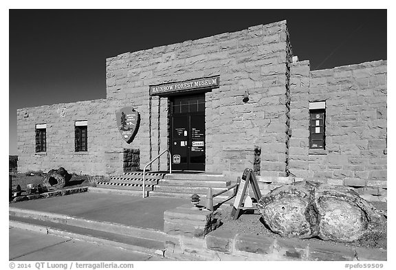 Rainbow Forest Museum. Petrified Forest National Park (black and white)