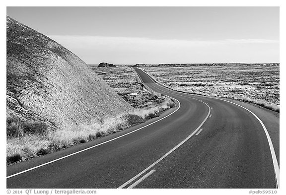 Road near the Flattops. Petrified Forest National Park (black and white)