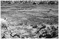 Badlands and petrified wood, Jasper Forest. Petrified Forest National Park ( black and white)