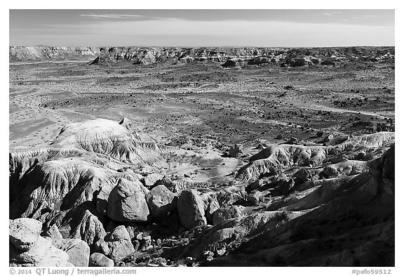 Valley covered with petrified wood, Jasper Forest. Petrified Forest National Park (black and white)
