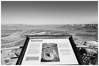 Interpretive sign, Jasper Forest. Petrified Forest National Park ( black and white)