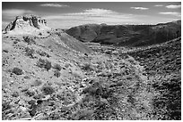 Trail, Painted Desert. Petrified Forest National Park ( black and white)