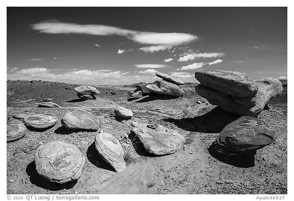 Concretion rocks, Painted Desert. Petrified Forest National Park (black and white)