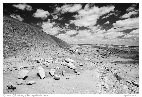 Concretions, Painted Desert badlands. Petrified Forest National Park (black and white)