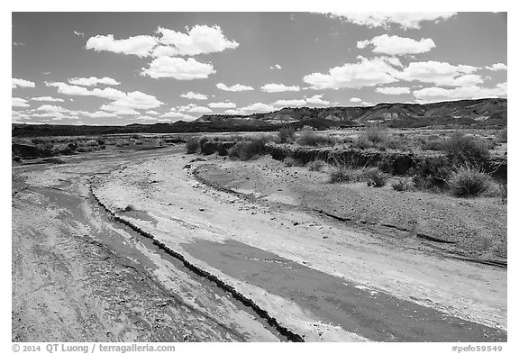 Dry desert wash. Petrified Forest National Park (black and white)