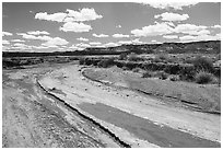 Dry desert wash. Petrified Forest National Park ( black and white)