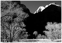 Pictures of Zion NP