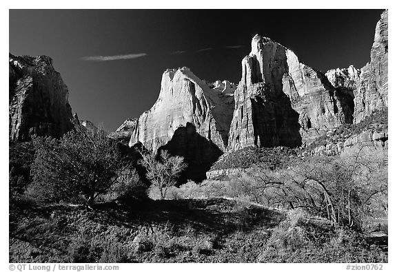Court of the Patriarchs sandstone towers, morning. Zion National Park (black and white)