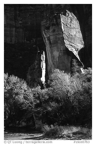 The Pulpit, Zion Canyon. Zion National Park (black and white)