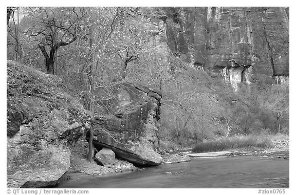 Virgin river at  entrance of the Narrows. Zion National Park (black and white)