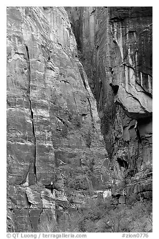 Canyon walls near Angel's landing. Zion National Park (black and white)