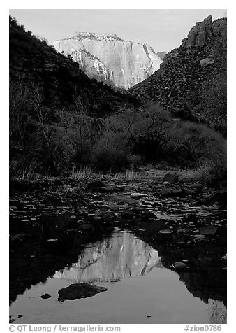 West temple reflected in Pine Creek, sunrise. Zion National Park (black and white)