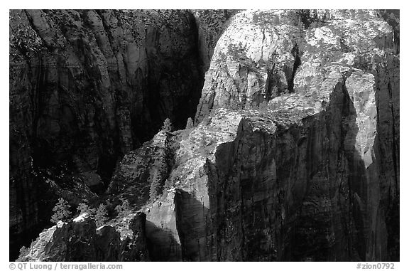 Cliffs seen from above near Angel's landing. Zion National Park (black and white)