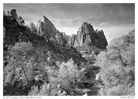 Court of the Patriarchs and Virgin River, afternoon. Zion National Park (black and white)