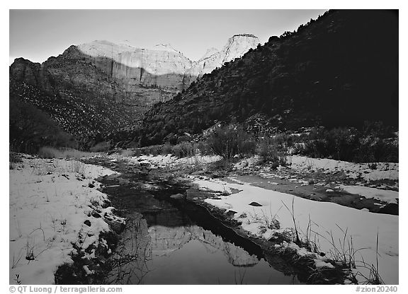 Snowy Pine Creek and Towers of the Virgin, sunrise. Zion National Park (black and white)