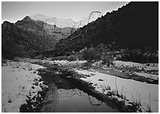 Snowy Pine Creek and Towers of the Virgin, sunrise. Zion National Park ( black and white)