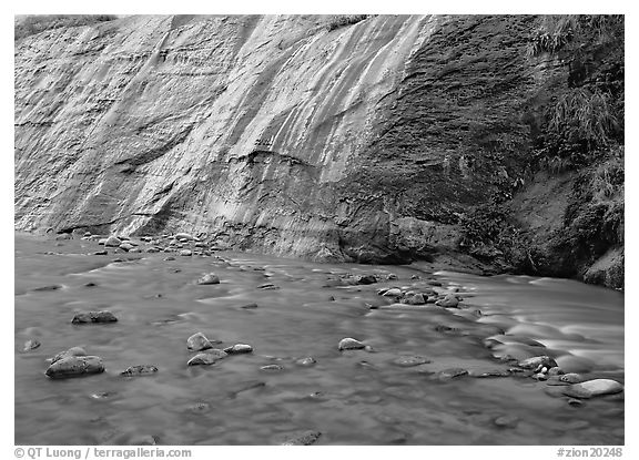 Mystery falls flowing into the Virgin River, the Narrows. Zion National Park (black and white)