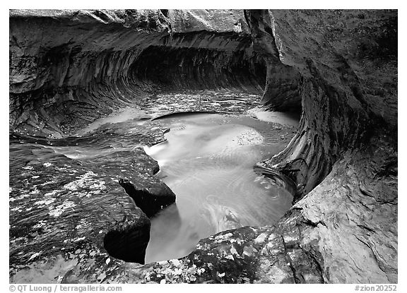 North Creek flowing over fallen leaves, the Subway. Zion National Park (black and white)