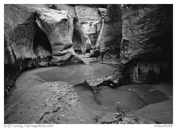 Pools and slot canyon rock walls, the Subway. Zion National Park (black and white)