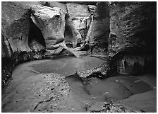 Pools and slot canyon rock walls, the Subway. Zion National Park, Utah, USA. (black and white)
