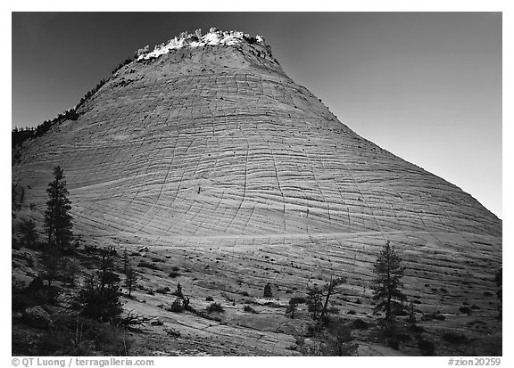 Checkerboard Mesa with top illuminated by sunrise. Zion National Park (black and white)