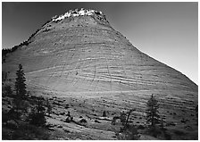 Checkerboard Mesa with top illuminated by sunrise. Zion National Park, Utah, USA. (black and white)