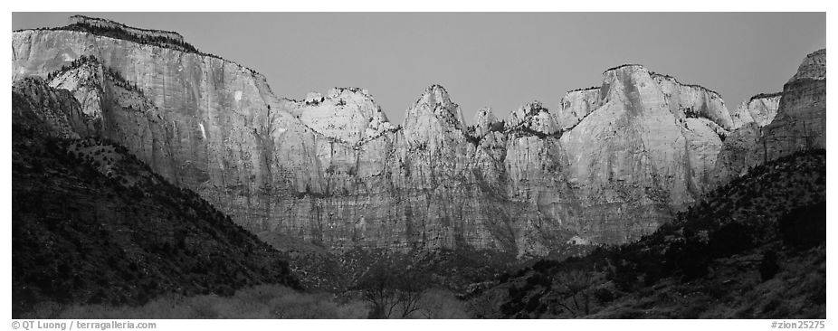 Towers of the Virgin cliffs at dawn. Zion National Park (black and white)