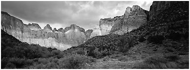 Amphitheater of tall towers. Zion National Park (Panoramic black and white)
