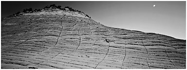 Checkered pattern on Checkboard Mesa. Zion National Park (Panoramic black and white)