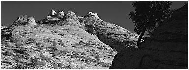 Sandstone swirls, Zion Plateau. Zion National Park (Panoramic black and white)