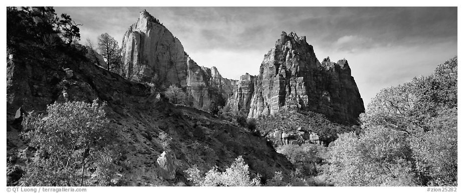Zion Canyon scenery. Zion National Park (black and white)