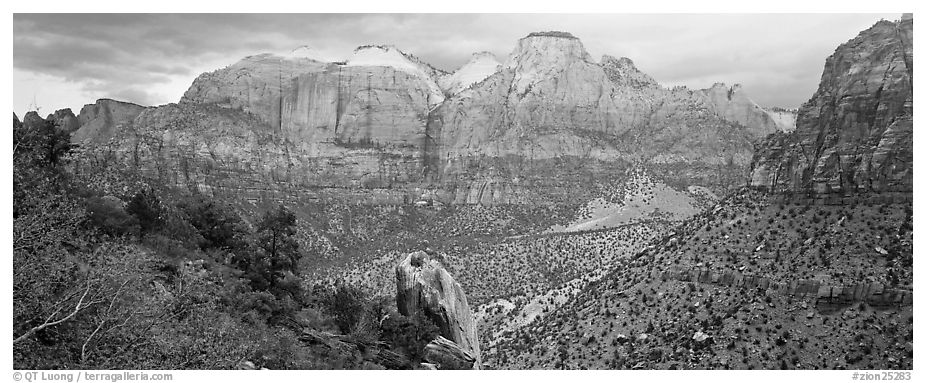 Towers of the Virgin View. Zion National Park (black and white)