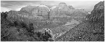 Towers of the Virgin View. Zion National Park (Panoramic black and white)