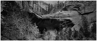 Double Arch Alcove, Kolob Canyons. Zion National Park (Panoramic black and white)