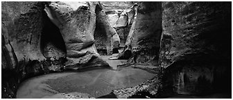 Sculptured walls of narrow gorge. Zion National Park (Panoramic black and white)