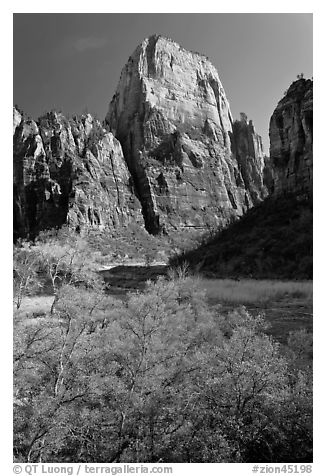 Great White Throne. Zion National Park (black and white)