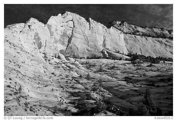 White and pink cliff, Zion Plateau. Zion National Park (black and white)