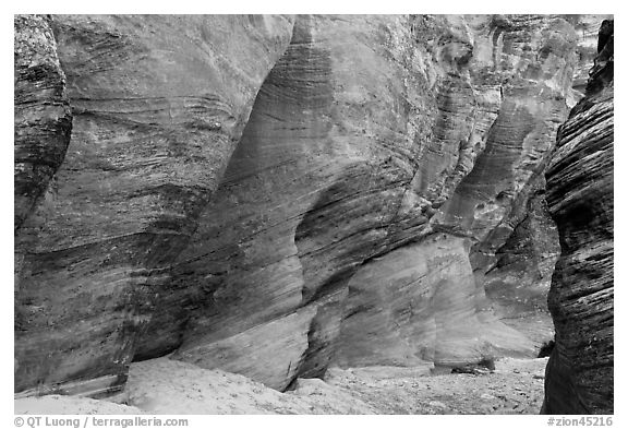 Rocks polished by water in gorge. Zion National Park (black and white)